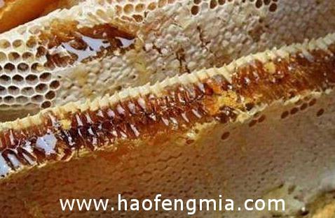 为什么农村蜂蜜价格那么贵?
