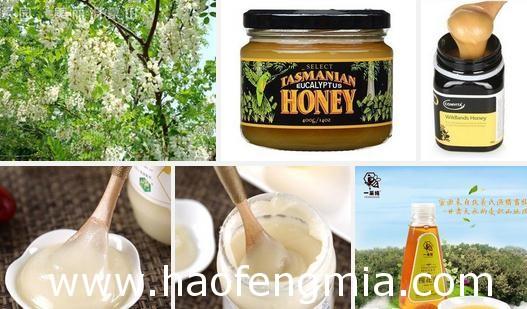 宁波出口蜂蜜首次进入伊拉克市场