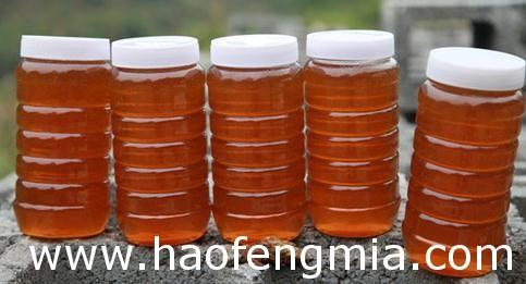 江西奉新天然蜂蜜畅销大上海