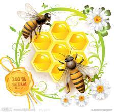 我国蜂蜜消费总量居世界第一位