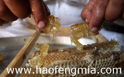 宁夏食药监局蜂蜜抽检   3批次蜂蜜样品全部合格