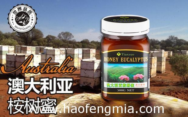 厦门口岸首次进口澳洲蜂蜜