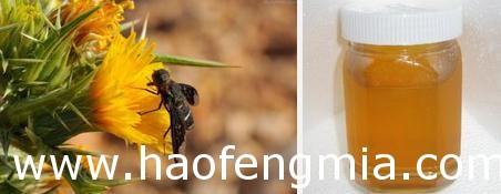 广西食药监局抽检蜂产品:17批次样品全部合格