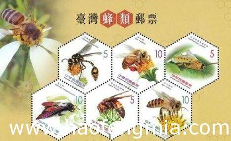 台湾养蜂业之台湾养蜂史介绍