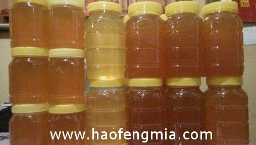 蜂蜜多少钱一斤