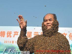 河北赞皇200名蜂农将获养蜂证