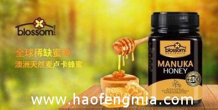 什么才是真正的麦卢卡蜂蜜?