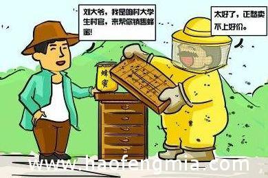 蜂蜜销售市场乱象分析