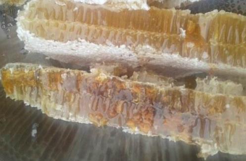 成熟蜜有什么特点?成熟蜜特性介绍
