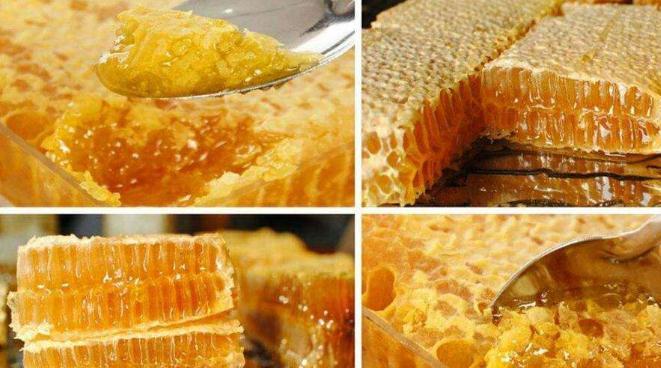 土蜂蜜价格高为什么养的人反而越来越少