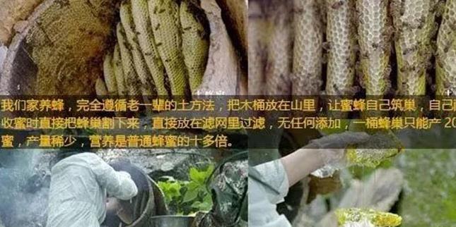 网红杨霞卖蜂蜜事件解密