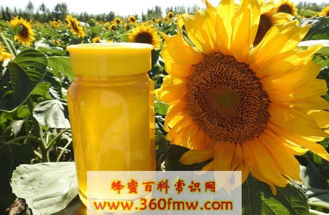 向日葵蜂蜜好吗?好蜂蜜之向日葵蜂蜜的作用及功效介绍