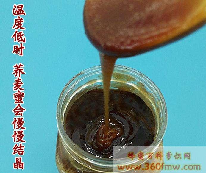 荞麦蜂蜜好吗?好蜂蜜之荞麦<a href=http://www.360fmw.com target=_blank class=infotextkey>蜂蜜的作用与功效</a>介绍