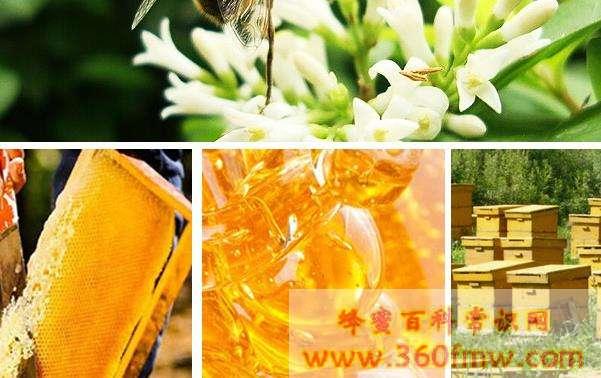 深圳市抽检蜂产品  产品合格