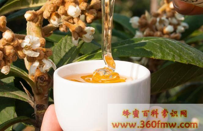 不同花的蜂蜜的作用与功效