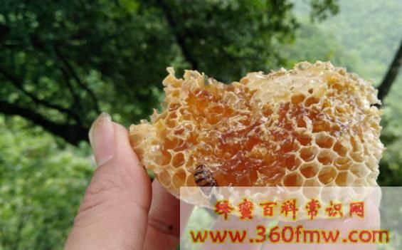蜂蜜能加热吗_蜂蜜如何加热