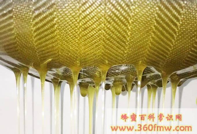 老蜂巢蜜作用_老蜂巢蜜的功效和作用