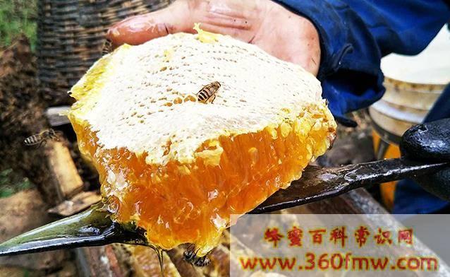 发酵了的蜂蜜还能喝么_蜂蜜发酵了还能吃吗
