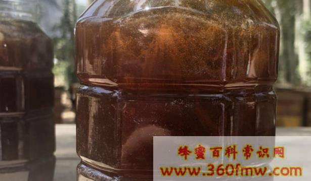蜂蜜有哪些种类?蜂蜜行业知识介绍