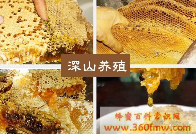 胆结石可以喝蜂蜜吗_胆结石能吃蜂蜜吗