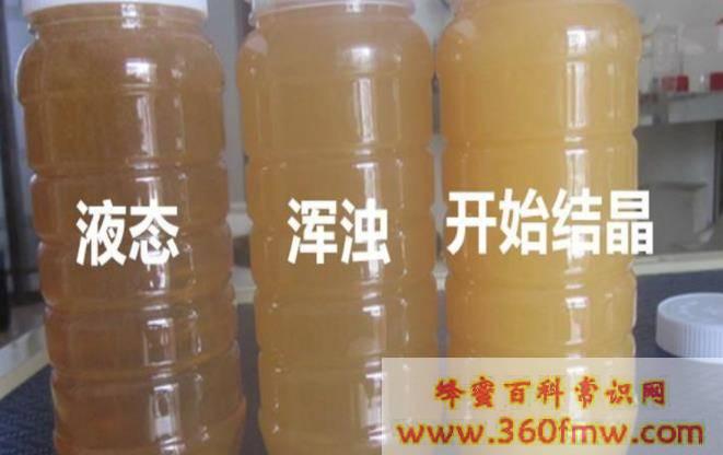 罗汉果甘蔗蜂蜜甜水做法
