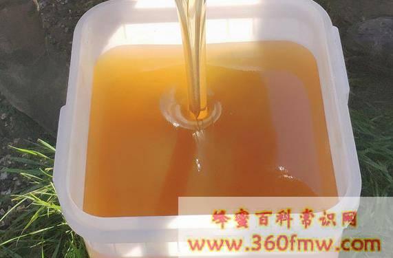 天然成熟椴树蜜具有哪些特点_东北野生椴树蜜