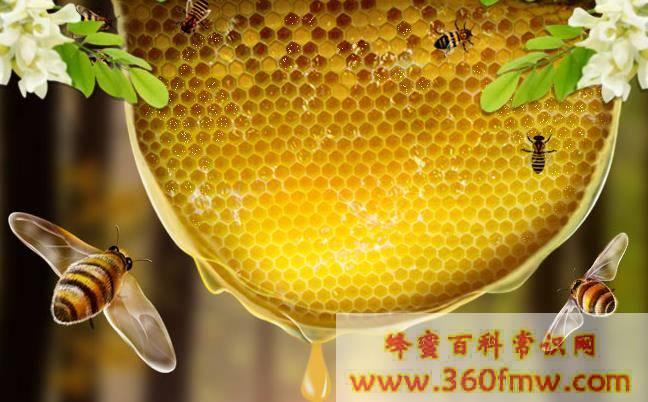 蜂蜜美容和苦瓜一起吃可以去痘吗
