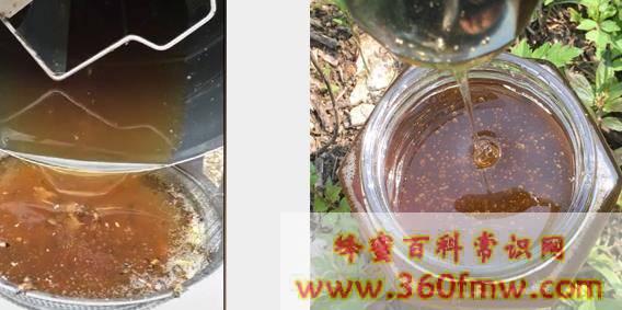 标签上蜂蜜的保质期准确吗