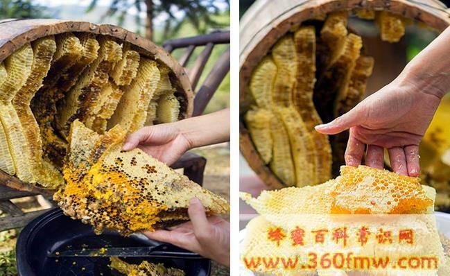 常见的蜂产品有哪些