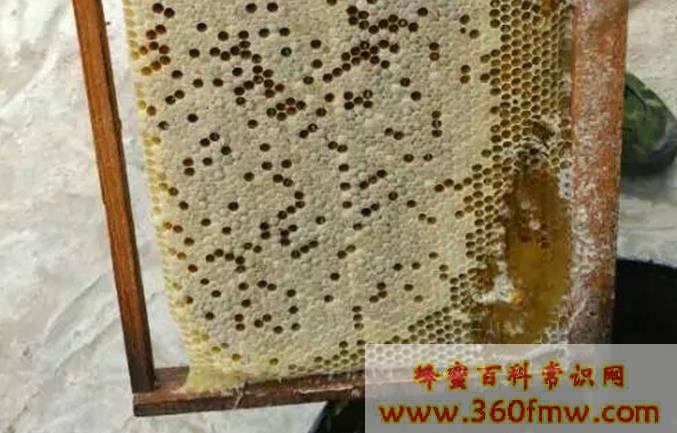 蜜乐蜂蜜怎么样