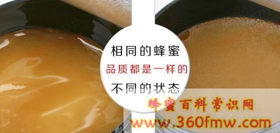 新西兰国宝麦卢卡蜂蜜秘密:标识混乱售价不菲