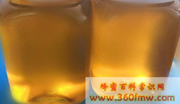 四川<a href=http://www.360fmw.com/myzw/ target=_blank class=infotextkey><a href=http://www.360fmw.com/myzw/ target=_blank class=infotextkey>蜜源植物</a></a>_四川蜜源分布