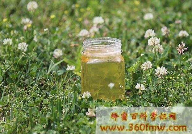 秋季喝蜂蜜有什么好处?秋季喝蜂蜜水的好处?