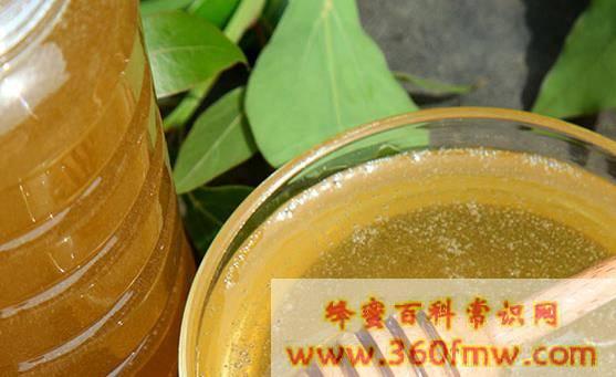 枣花蜜蜂蜜的作用与功效