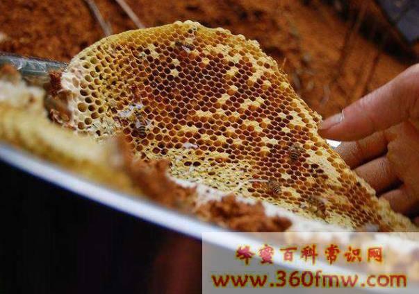 蜜蜂蜂群的合并方法,蜜蜂怎么合并蜂群