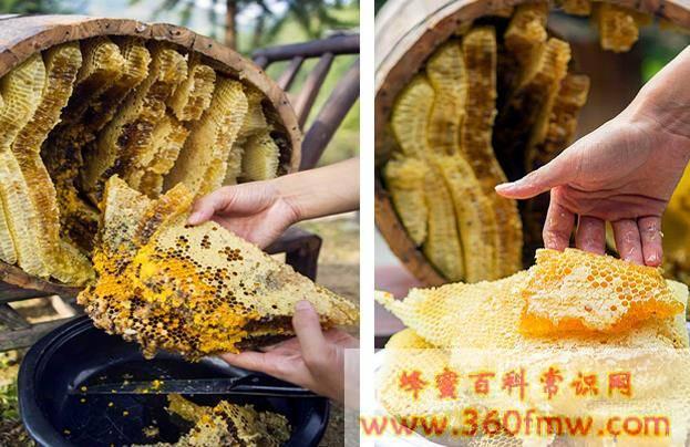 养蜂巢脾的维修和保管方法