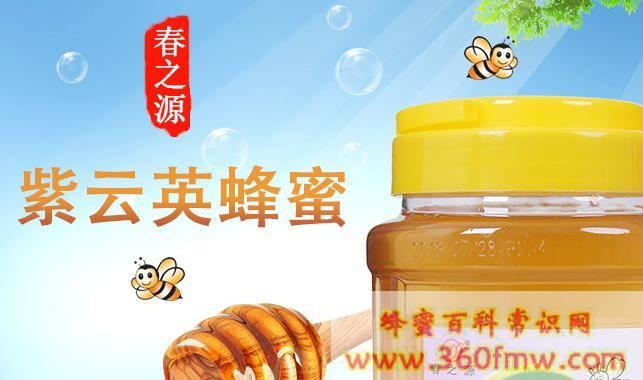 紫云英蜂蜜功效与作用 紫云英蜂蜜的功效
