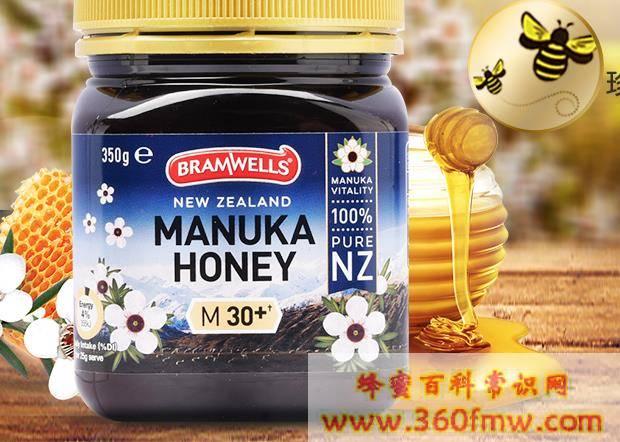 特种蜂蜜是什么蜂蜜