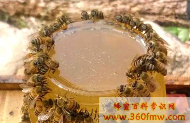 蜂蜜水长期喝有什么好处和坏处