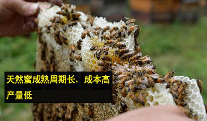 天然纯蜂蜜多少钱一斤?蜂蜜多少钱一斤?