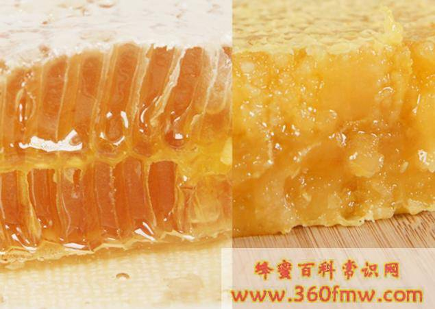 智利蜂蜜企业看好中国市场