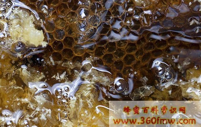 四川蜂蜜抽检:1批次土蜂蜜检出诺氟沙星