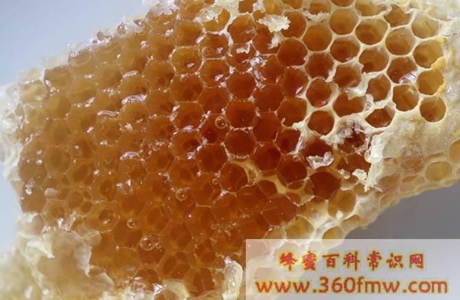 龙眼蜜有什么功效?龙眼蜜有什么功效与作用