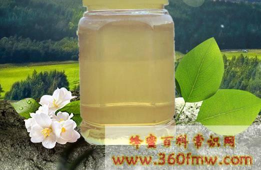 椴树蜜的功效与作用_喝椴树蜜的好处