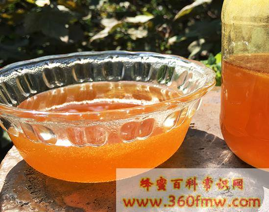 为什么蜂蜜水会发霉  蜂蜜水发霉