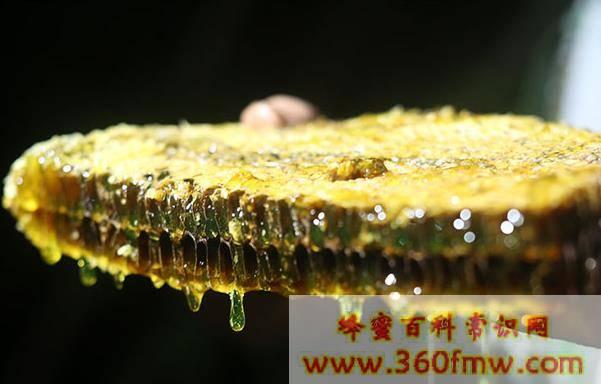 真正纯蜂蜜有什么特点?天然蜂蜜的特点