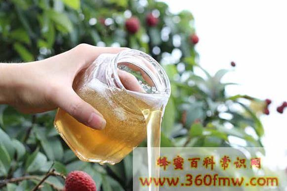 广东好蜂蜜:古兜山蜂蜜介绍