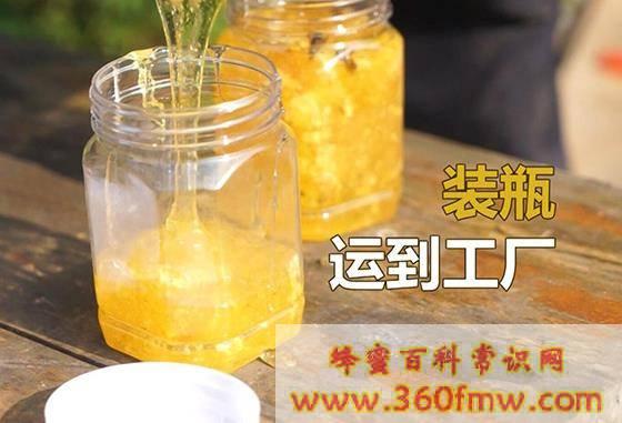 贵州哪种蜂蜜好