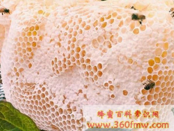 土蜂蜜好吗?德兴土蜂蜜介绍