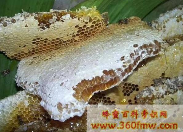 卢氏蜂蜜:全国生态原产地保护产品